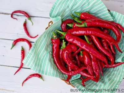The Benefits of Cayenne Pepper