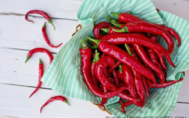 cayenne pepper has many medicinal benefits