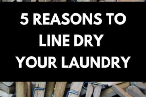 Lots of wooden pegs for peggin laundry to a line, text: 5 reasons to line dry laundry