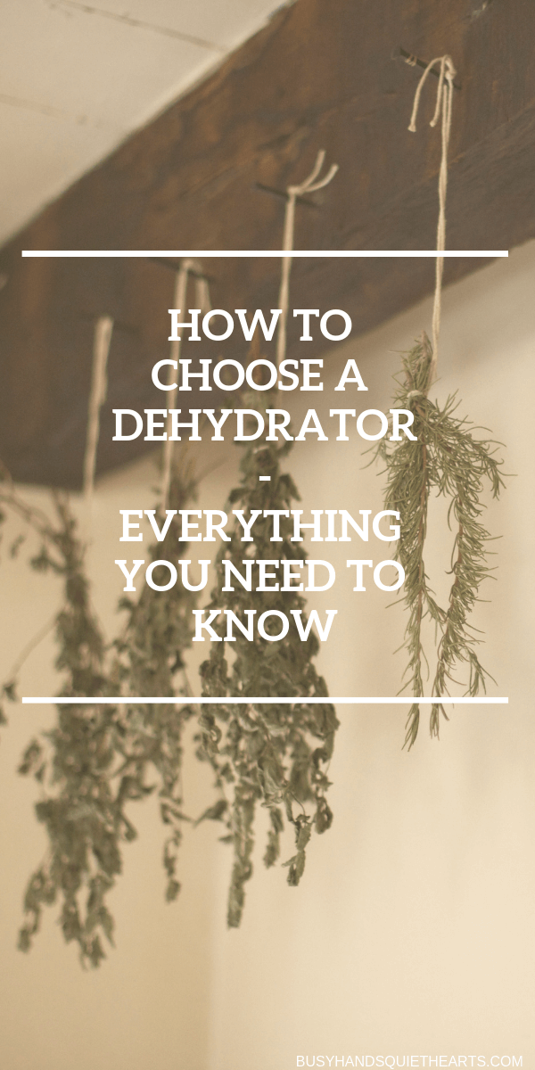 Herbs tied with string hanging to dry from ceiling. Text overlay: How to choose a dehydrator - Everything you need to know.