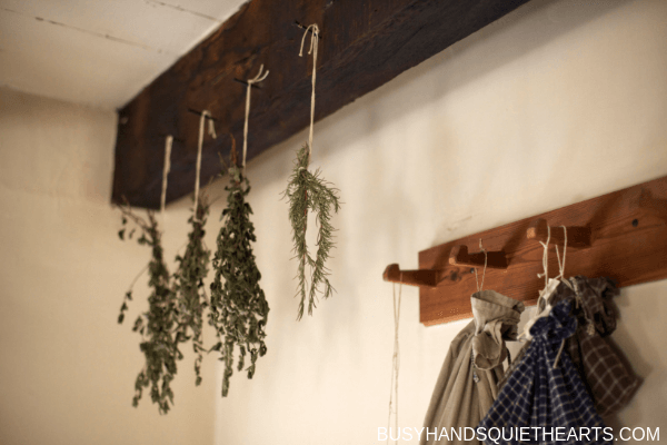 Dehydrated herbs hanging from ceiling tied with string.