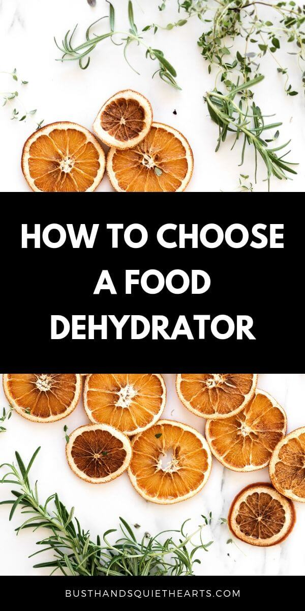 Dehydrated orange slices and herbs such as thyme and rosemary, text: How to choose a food dehydrator