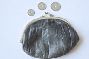 wallet with three coins