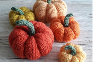 Five pumpkins in different colours and sizes